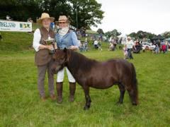 rescue-pony