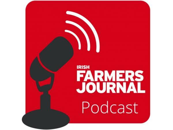 ifj-podcast