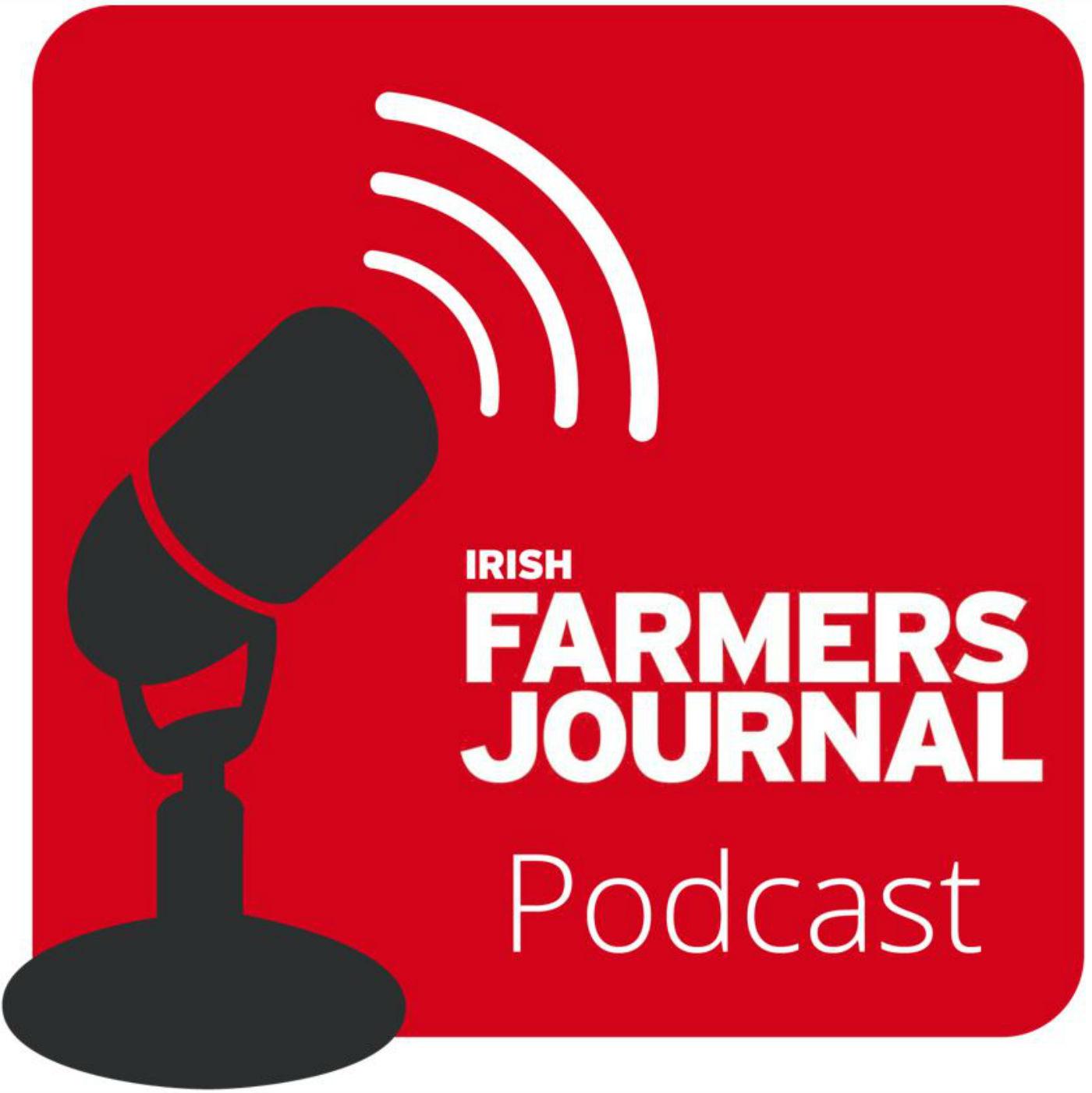 IFJ Podcast